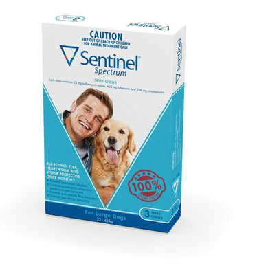 Sentinel Chew Blu Large (3 Pack)