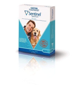 Sentinel Chew Blue Large (6 Pack)