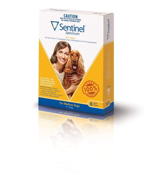 Sentinel Chew Yellow Medium (6 Pack)