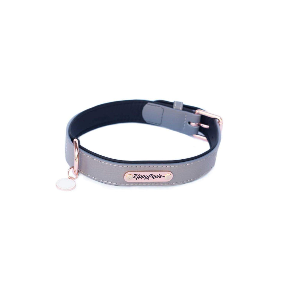 Vivid Collection Collar - Slate Medium