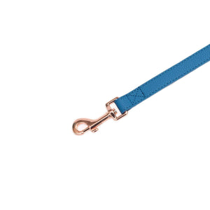 Vivid Collection Leash - Cobalt