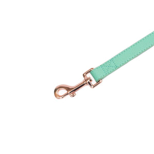 Vivid Collection Leash - Teal
