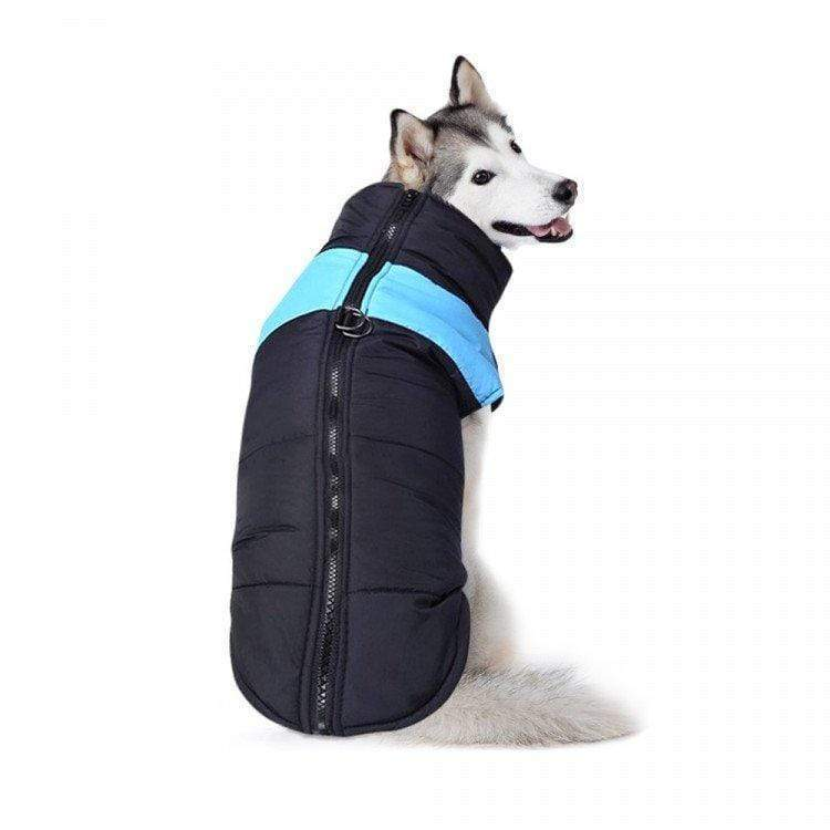 Waterproof Dog Jacket - Blue Large