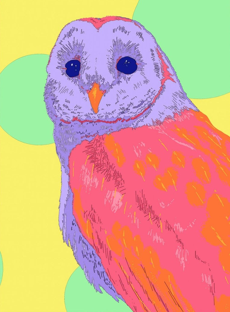 Barn Owl Art Print - Printed Originals