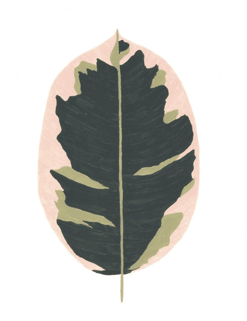 Ficus Art Print - Printed Originals