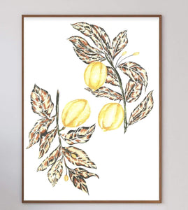 Lemon Art Print - Printed Originals