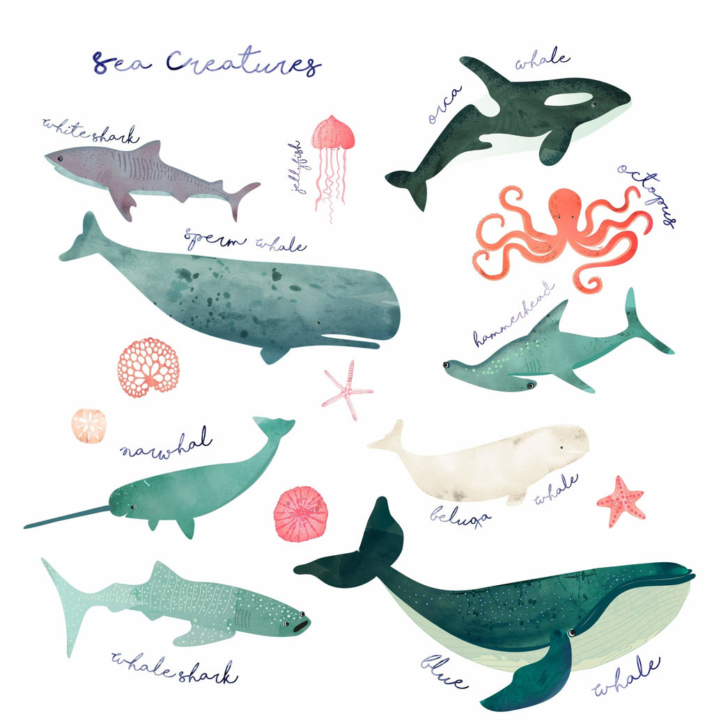 Sea Creatures Art Print - Printed Originals