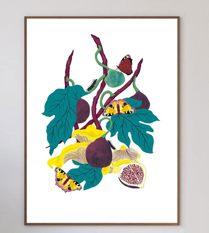 Still Life With Figs Limited Art Print