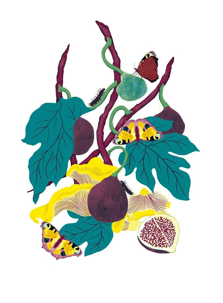 Still Life With Figs Limited Art Print - Printed Originals