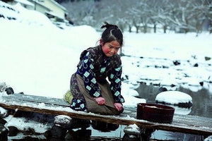 Oshin 2013 (Japanese Movie) BLU-RAY with English Subtitles (Region A) 阿信的故事