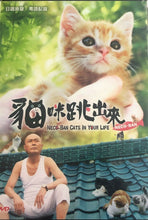 Load image into Gallery viewer, NECO-BAN CATS IN YOUR LIFE 貓咪跳出來 2010 (JAPANESE) DVD ENGLISH SUB (REGION 3)
