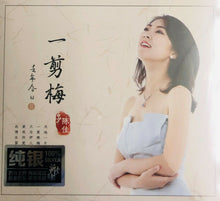 Load image into Gallery viewer, BOBO CHAN - 陳佳 去年今日 II SILVER (CD)