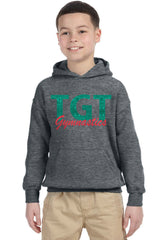 Heavy Blend™ Youth Pullover Hooded Sweatshirt-TGT