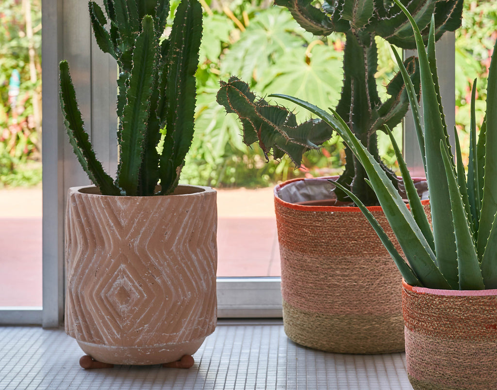 D&M TRENCH flower pot