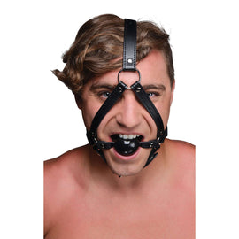 Head Harness with inch Ball Gag