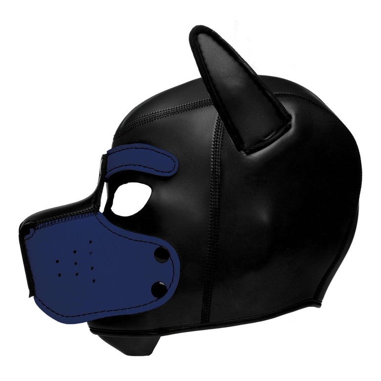 Spike Neoprene Puppy Hood - Blue