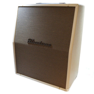 Bluetone Plexi 10 Head + Bluetone 2x10 Slanted & Light Speaker Cabinet (EX-DEMO)