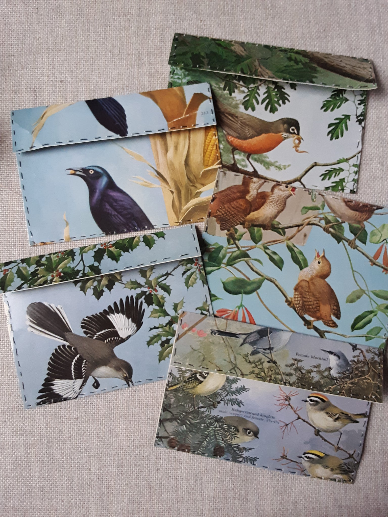 Hand Sewn Bird Envelopes set of 5 - SS