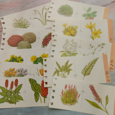 Plant Identification Cards set of 10 - LZ