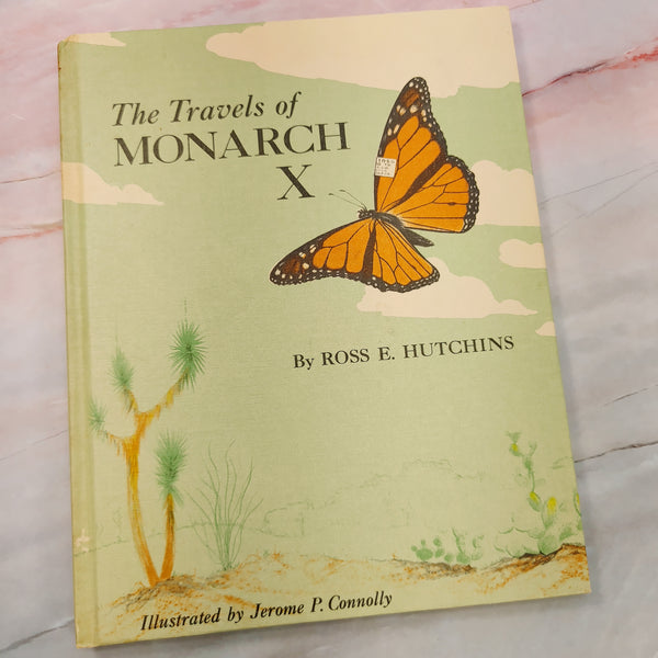 Vintage Butterfly Book -LZ