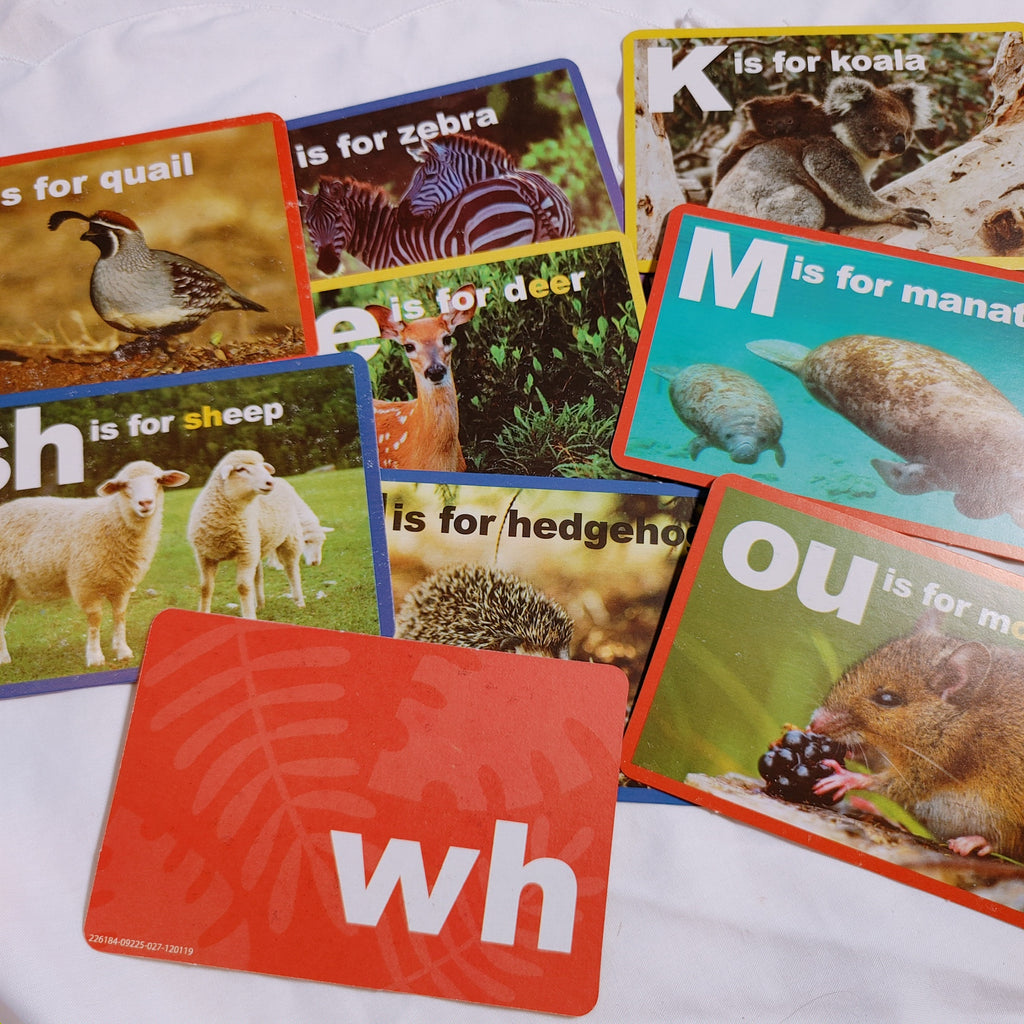 ABC Animal Flashcards - LZ