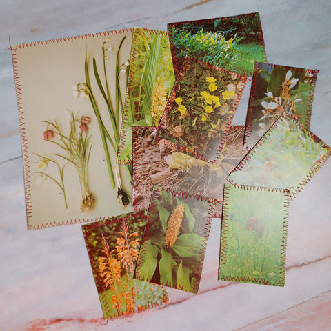 Vintage Bulb Stitched Journal Cards - LZ