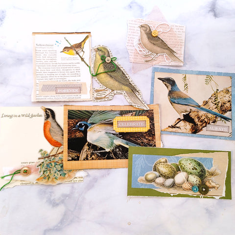 Pretty Birds Ephemera - LZ