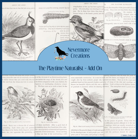 The Playtime Naturalist PRINTED Journal Cards Add On