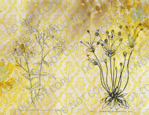 Grungy Saffron Wallflowers PRINTED Booster Paper Pack & Elements - 8 Pages