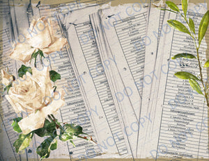 Abandoned Beauty PRINTED Journal Kit