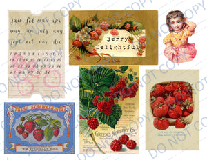 Berry Delightful DIGITAL Journal Kit