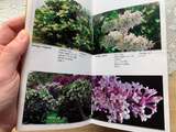 Taylor's Guide to Shrubs Book
