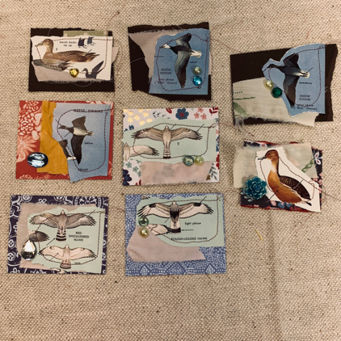 Vintage Wild Birds Snippets set of 8