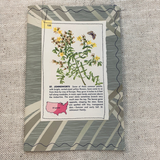 St. John's Wort Stitched Wallpaper & Fabric Journal Cover -LZ