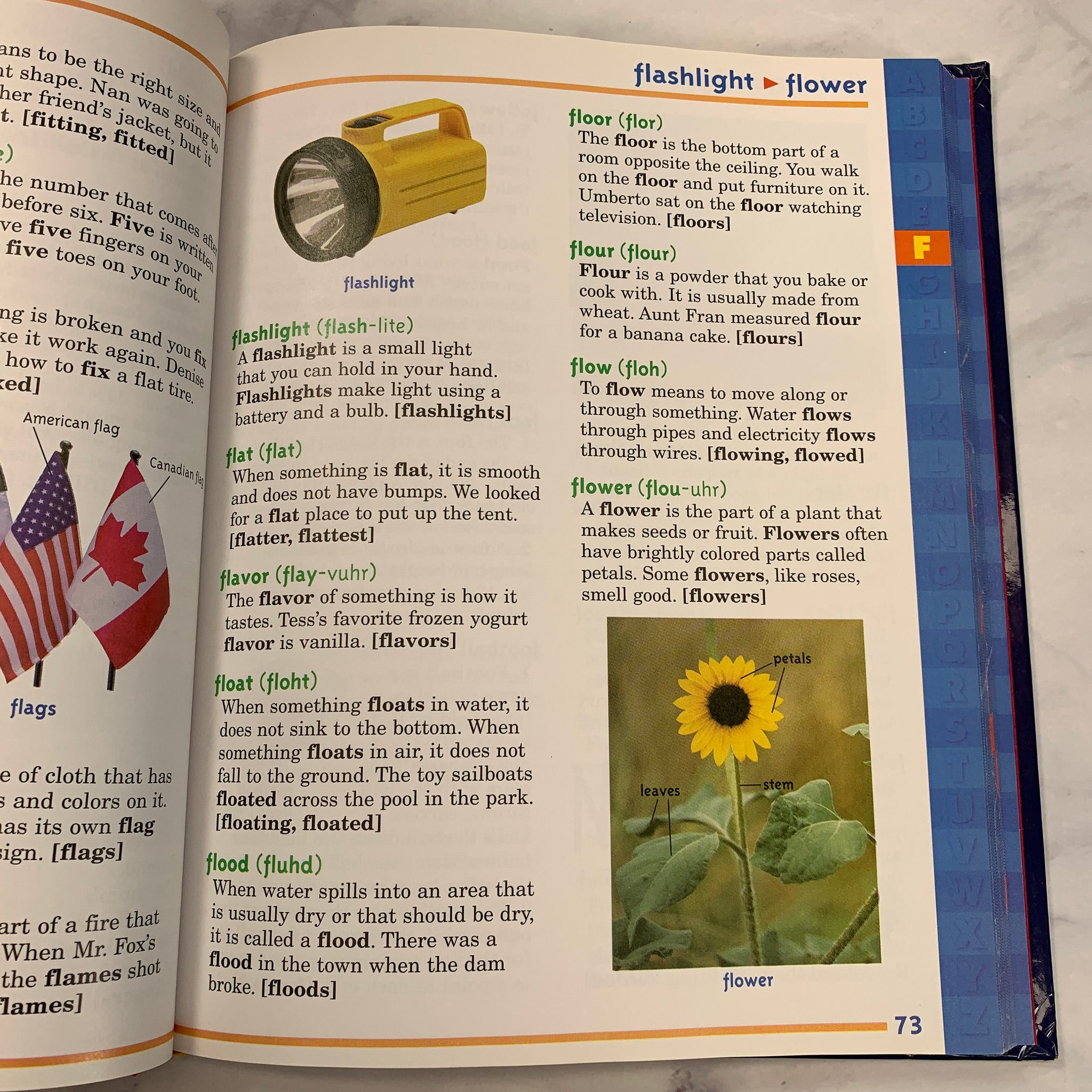 Scholastic First Dictionary - JH