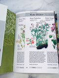Flower Garden Junk Journal by Frances from Germany