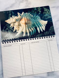 Seashells of Florida Address Book