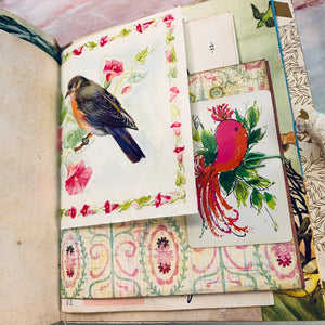Birds Junk Journal by Debby Young (AprCh)