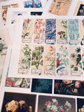 Cardstock Ephemera Prints Set 2 - 10 Pages- LZ