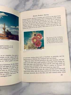 Audubon Nature Program Cactus Vintage Booklet