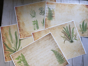 Vintage Ferns Printed Digital Paper Pack - JH