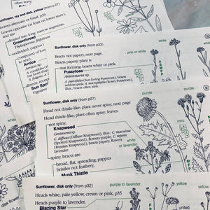 Vintage 1990 Rocky Mountain Flower Identification Pages - LZ