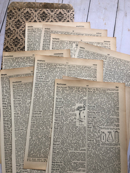 10 Pages from 1934 Dictionary - JH