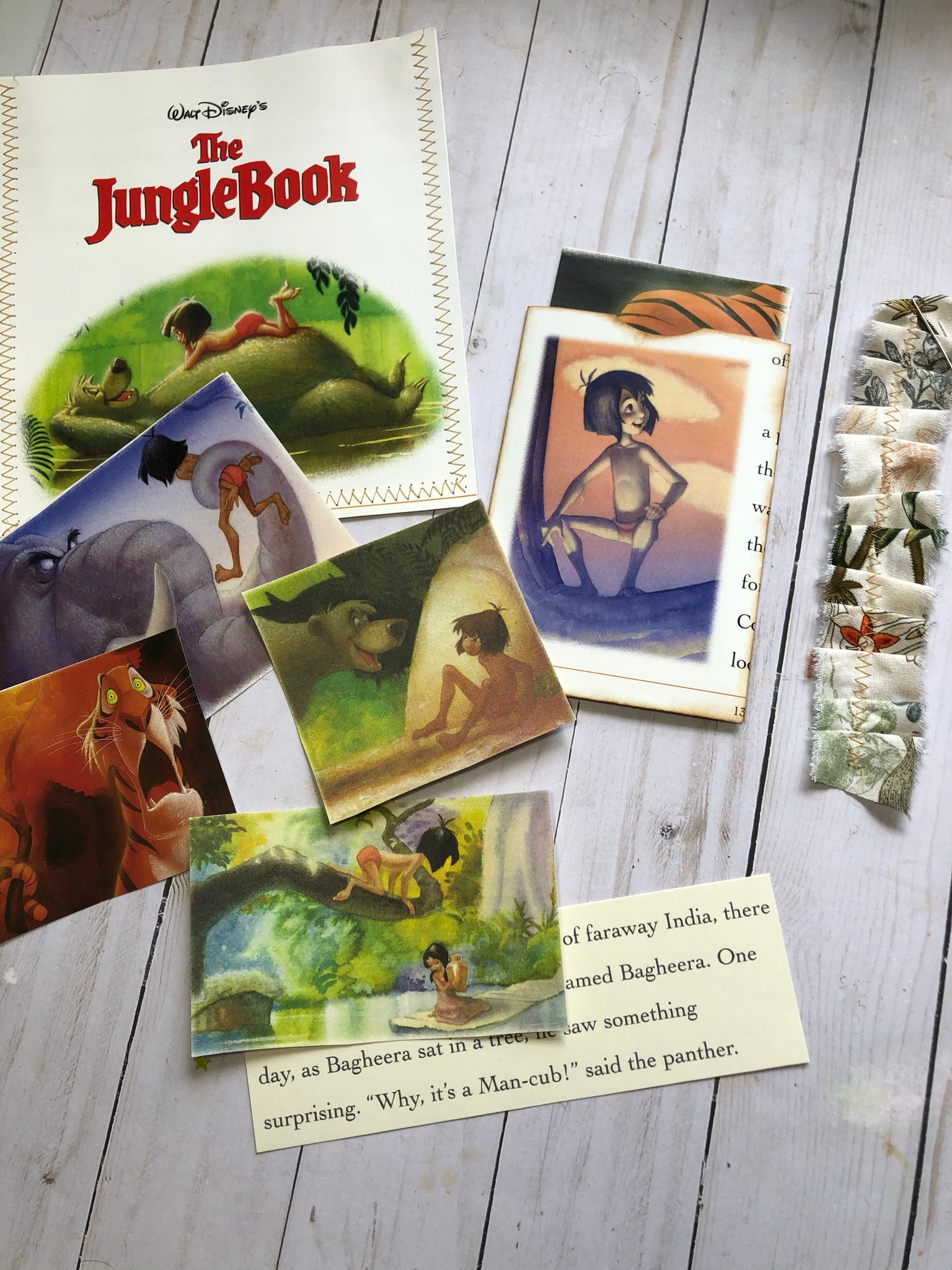 The Jungle Book Ephemera Bag - JH