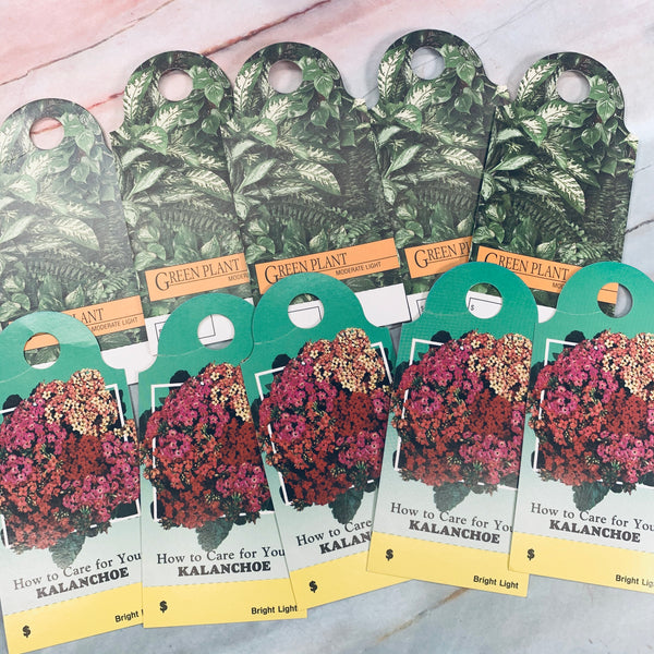10 Vintage Plant Hanging Tags - LZ