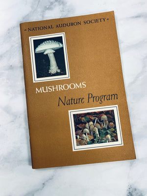 Audubon Nature Program Mushrooms Vintage Booklet