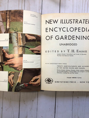 New Illustrated Encyclopedia of Gardening- JH