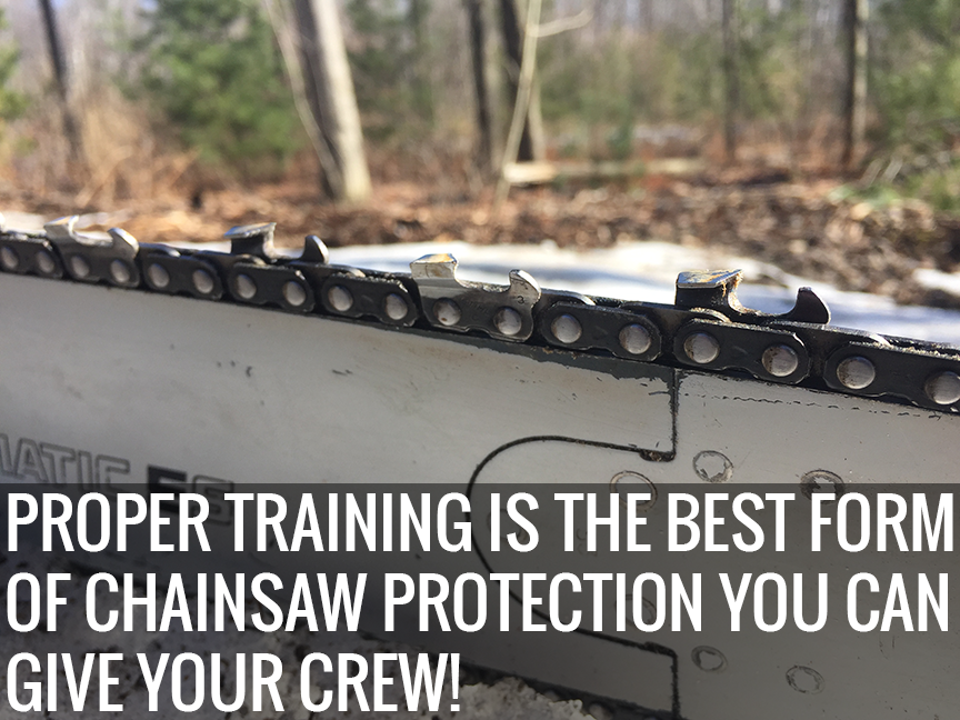 Proper Use of Cutting Tools: Chainsaw Training and Handsaw Safety