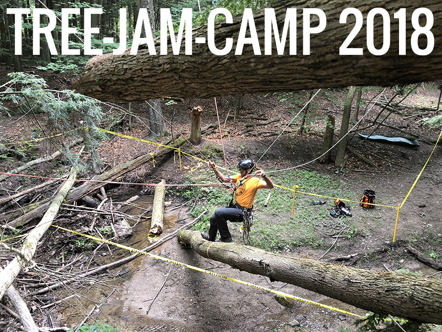 The Competition and Camaraderie of Tree Jam Camp