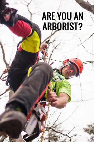 Question 3: Are You An Arborist?
